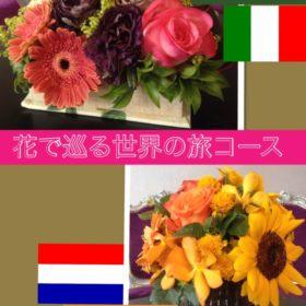 花で巡る世界の旅コース
